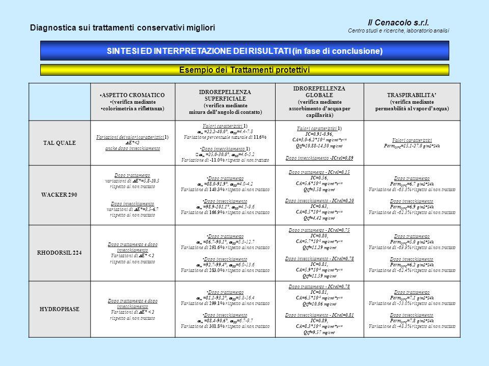Il Cenacolo s.r.l. Centro studi e ricerche, laboratorio analisi SINTESI ED INTERPRETAZIONE DEI RISULTATI (in fase di conclusione) Diagnostica sui trat
