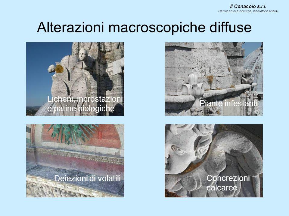 Alterazioni macroscopiche specifiche Grigio della Montagnola Degradazione differenziale Patinatura Mancanza Macchie di minio Il Cenacolo s.r.l.