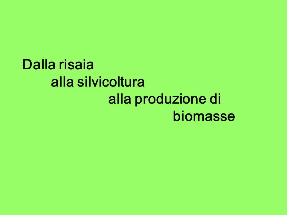 Dalla risaia alla silvicoltura alla produzione di biomasse