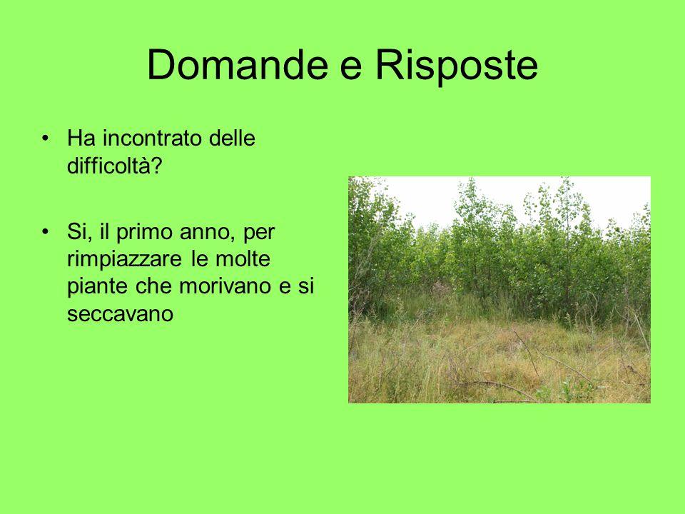 Domande e Risposte Quali tipi di biomasse produce? Biomasse da cespugli di Robinia