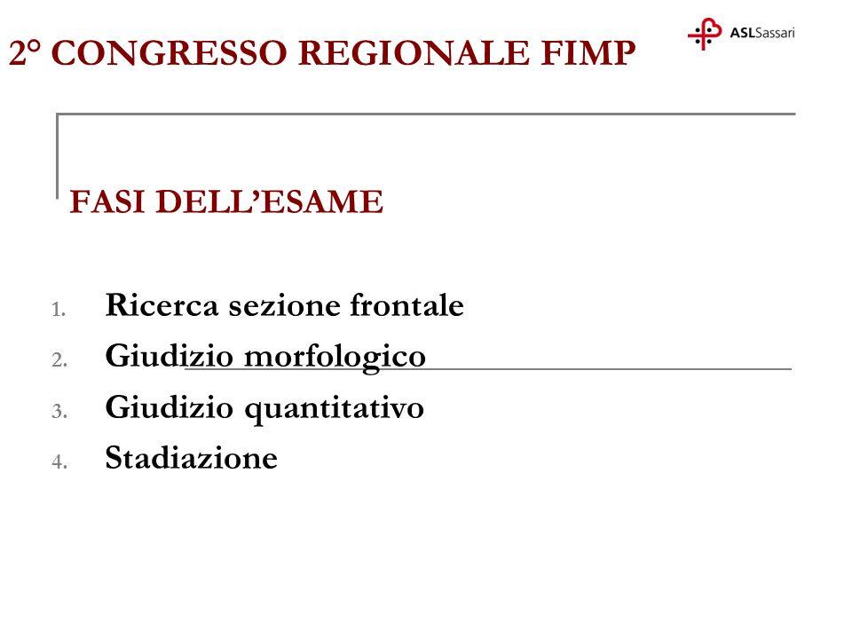 2° CONGRESSO REGIONALE FIMP FASI DELLESAME 1. Ricerca sezione frontale 2. Giudizio morfologico 3. Giudizio quantitativo 4. Stadiazione