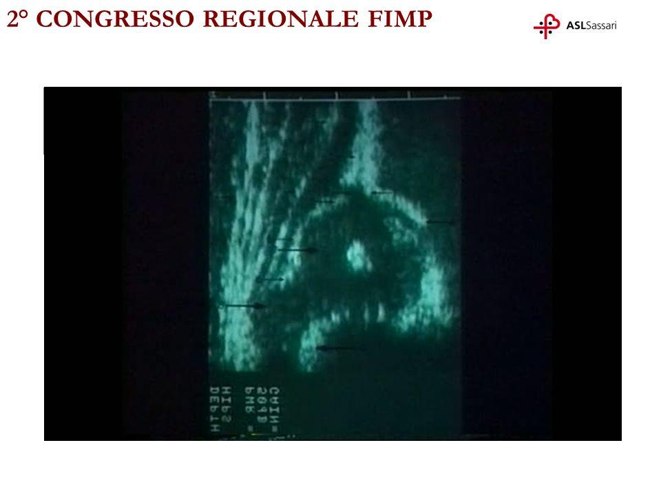 2° CONGRESSO REGIONALE FIMP