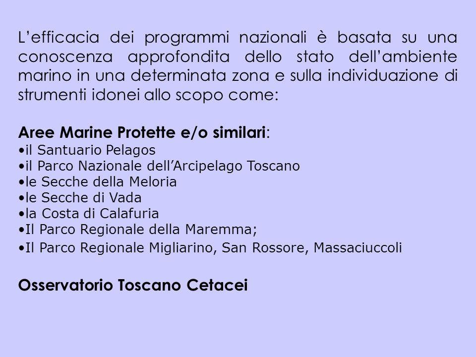 Lefficacia dei programmi nazionali è basata su una conoscenza approfondita dello stato dellambiente marino in una determinata zona e sulla individuazi