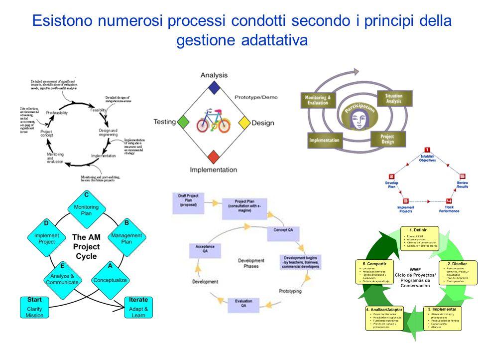 Esistono numerosi processi condotti secondo i principi della gestione adattativa
