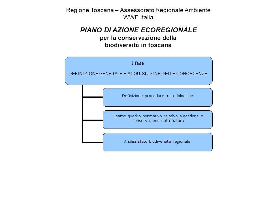 I fase DEFINIZIONE GENERALE E ACQUISIZIONE DELLE CONOSCENZE Definizione procedure metodologiche Analisi stato biodiversità regionale Esame quadro norm