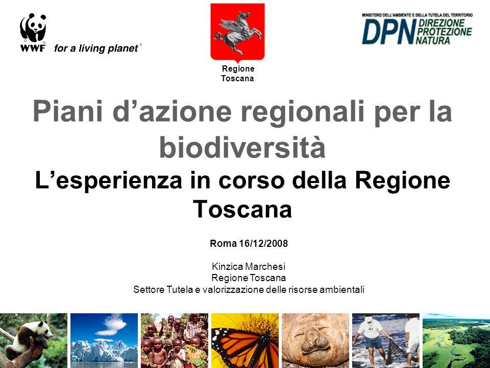 Piano dazione regionale per la biodiversità in Toscana Regione Toscana DI COSA SI TRATTA -La risposta della Regione Toscana ad impegni comunitari (Comunicazione Comm.