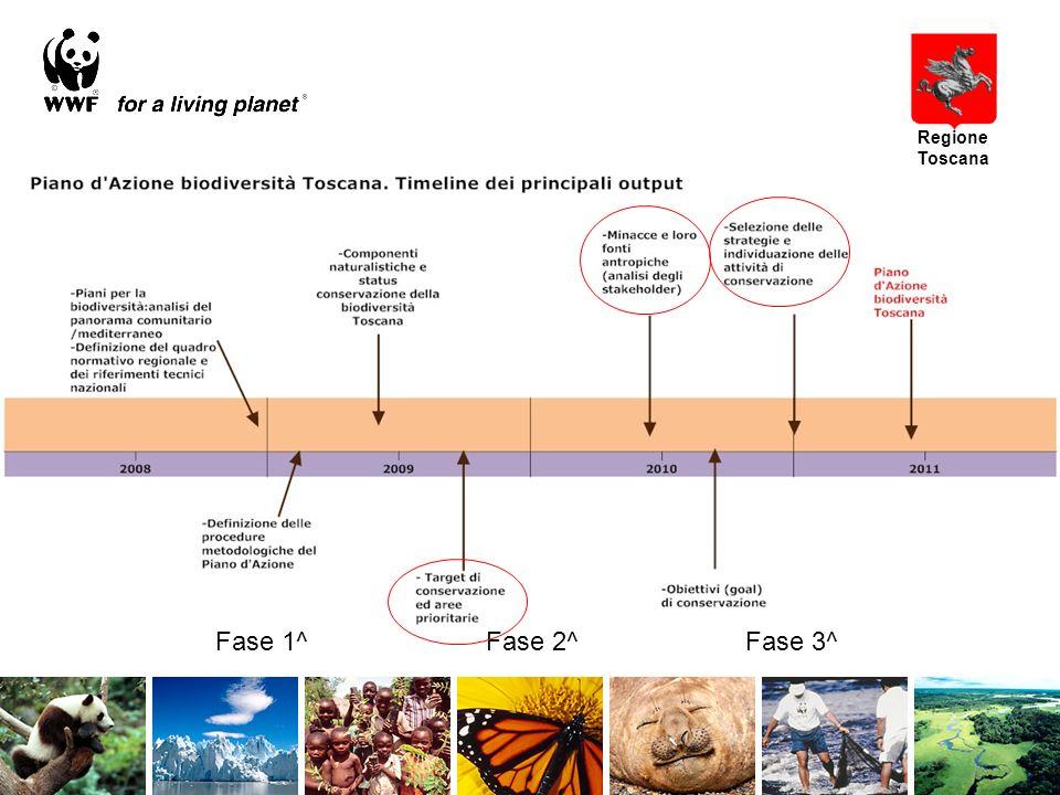 Fase 1^ Fase 2^ Fase 3^ Regione Toscana