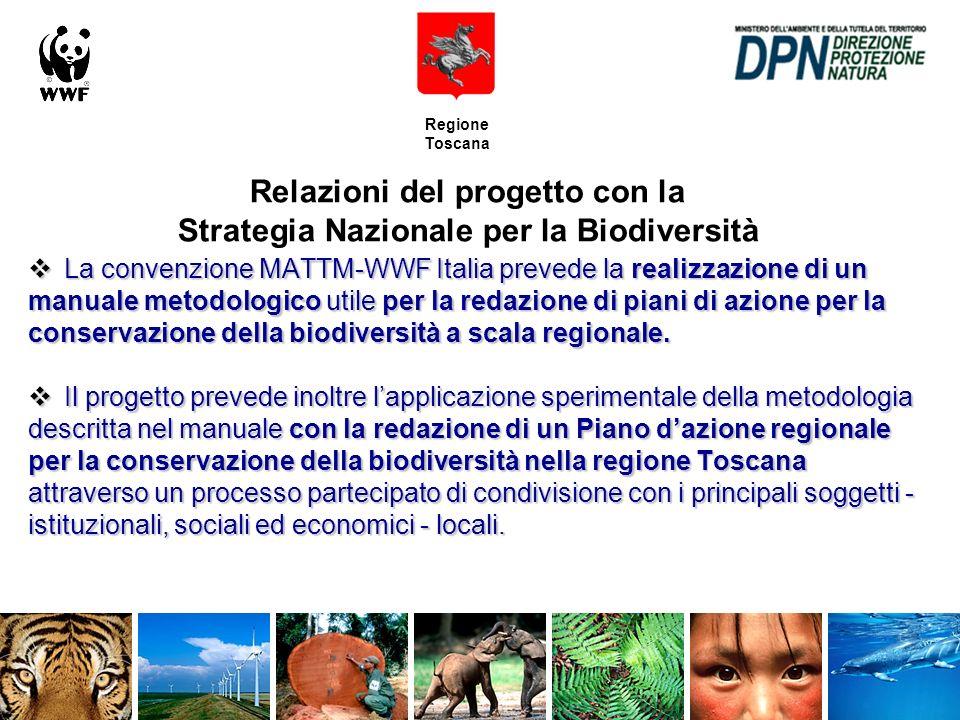 Regione Toscana Comunicazione del progetto:altri strumenti Newsletter Newsletter Mailing list Mailing list La newsletter non ha una scadenza programmata.
