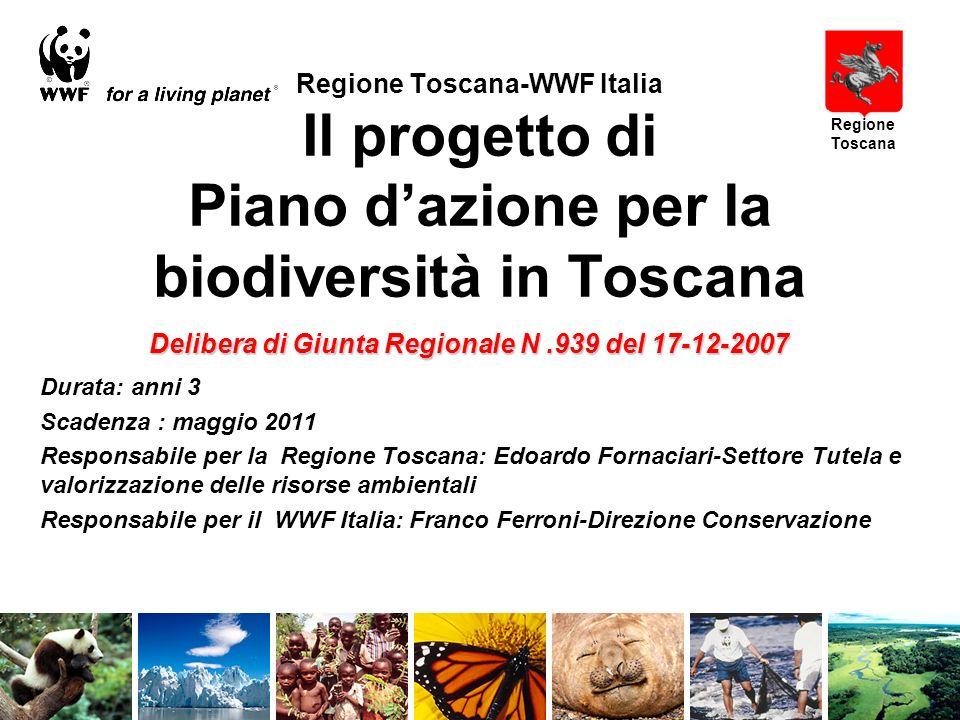 Regione Toscana-WWF Italia Il progetto di Piano dazione per la biodiversità in Toscana Durata: anni 3 Scadenza : maggio 2011 Responsabile per la Regione Toscana: Edoardo Fornaciari-Settore Tutela e valorizzazione delle risorse ambientali Responsabile per il WWF Italia: Franco Ferroni-Direzione Conservazione Regione Toscana Delibera di Giunta Regionale N.939 del 17-12-2007