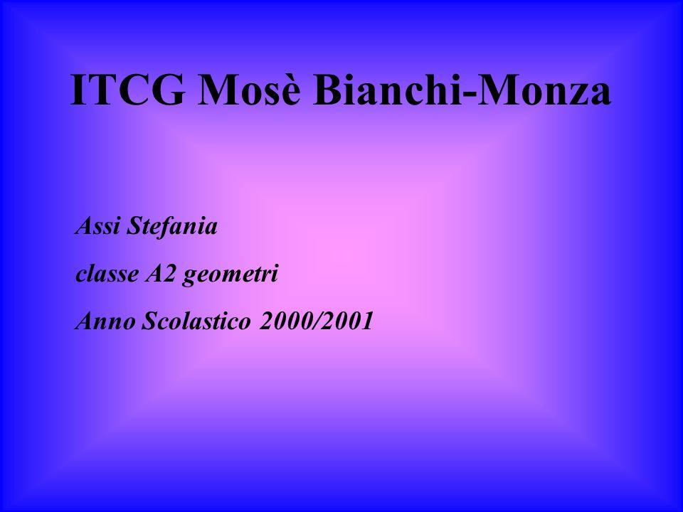 ITCG Mosè Bianchi-Monza Assi Stefania classe A2 geometri Anno Scolastico 2000/2001