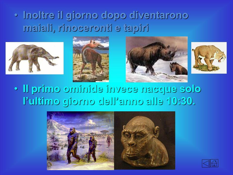 Inoltre il giorno dopo diventarono maiali, rinoceronti e tapiriInoltre il giorno dopo diventarono maiali, rinoceronti e tapiri Il primo ominide invece
