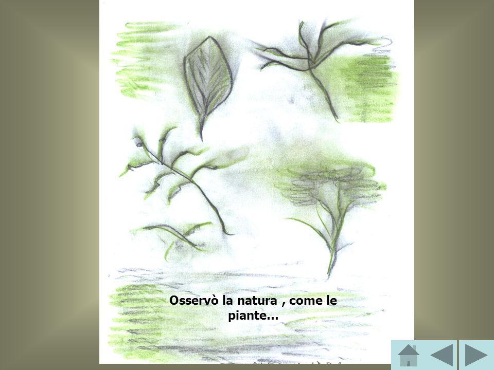 Osservò la natura, come le piante…