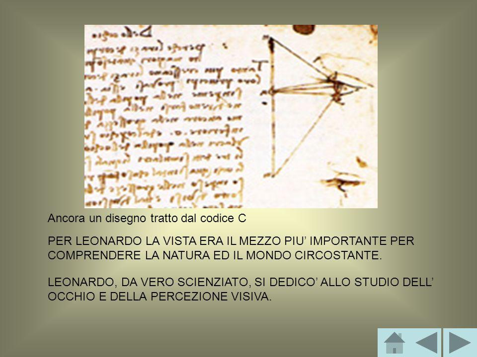 Ancora un disegno tratto dal codice C PER LEONARDO LA VISTA ERA IL MEZZO PIU IMPORTANTE PER COMPRENDERE LA NATURA ED IL MONDO CIRCOSTANTE.