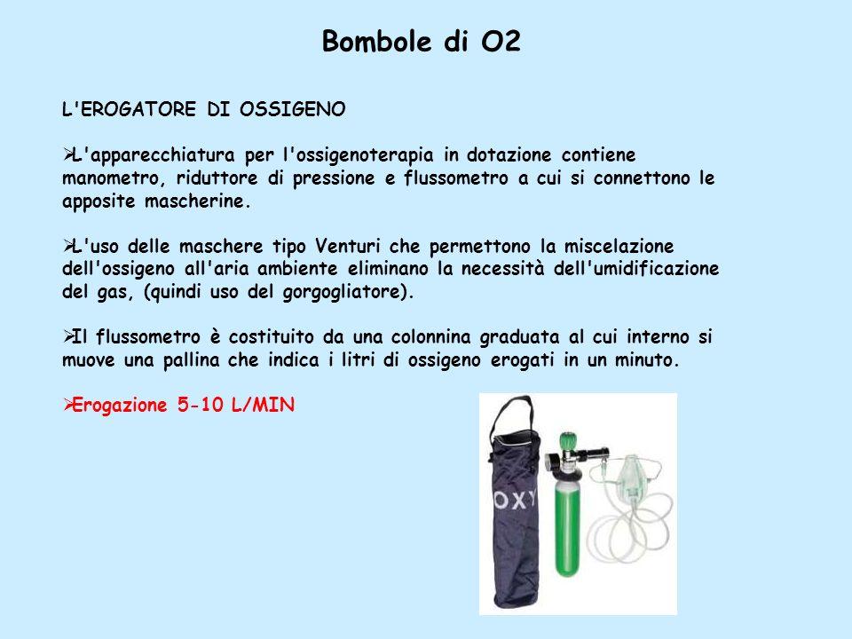 L'EROGATORE DI OSSIGENO L'apparecchiatura per l'ossigenoterapia in dotazione contiene manometro, riduttore di pressione e flussometro a cui si connett