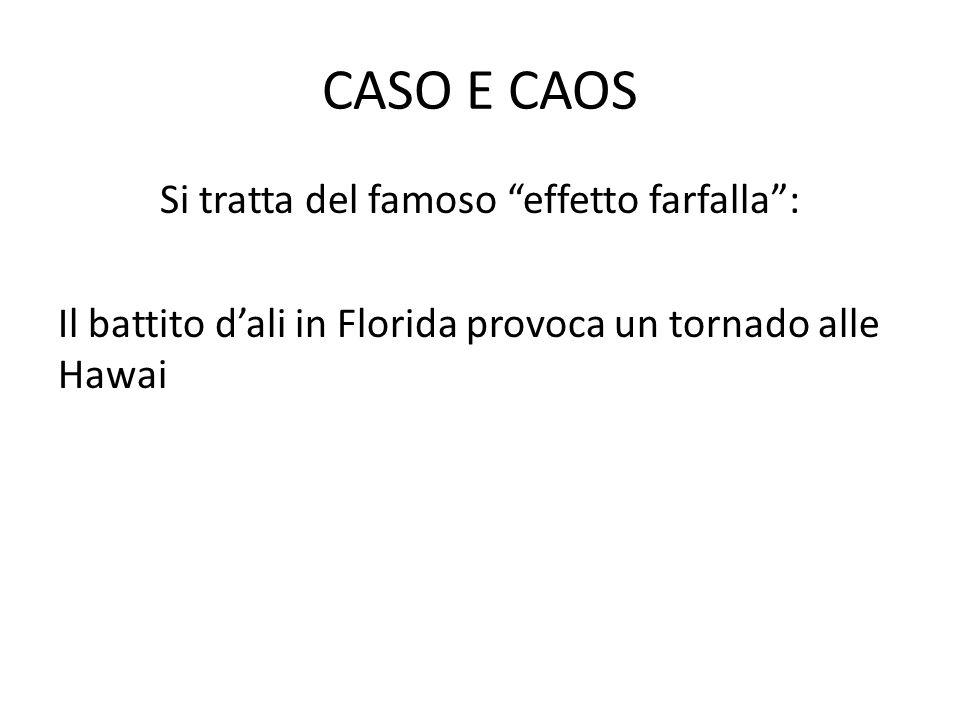 CASO E CAOS Si tratta del famoso effetto farfalla: Il battito dali in Florida provoca un tornado alle Hawai