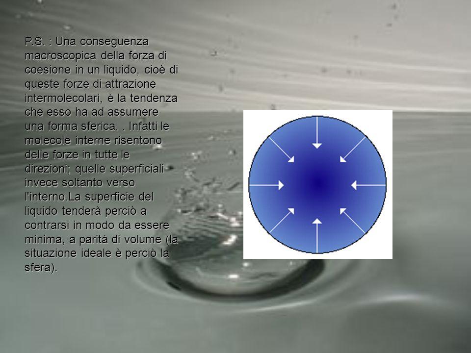 P.S. : Una conseguenza macroscopica della forza di coesione in un liquido, cioè di queste forze di attrazione intermolecolari, è la tendenza che esso