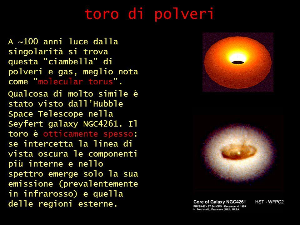 toro di polveri A ~100 anni luce dalla singolarità si trova questa ciambella di polveri e gas, meglio nota come molecular torus.