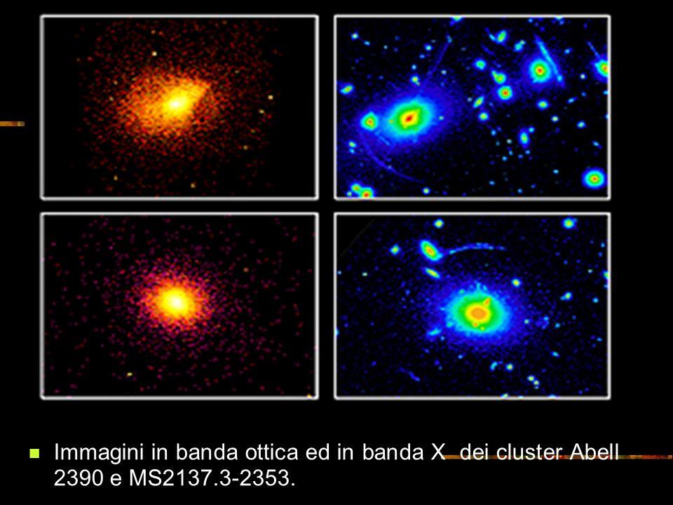 Immagini in banda ottica ed in banda X dei cluster Abell 2390 e MS2137.3-2353.
