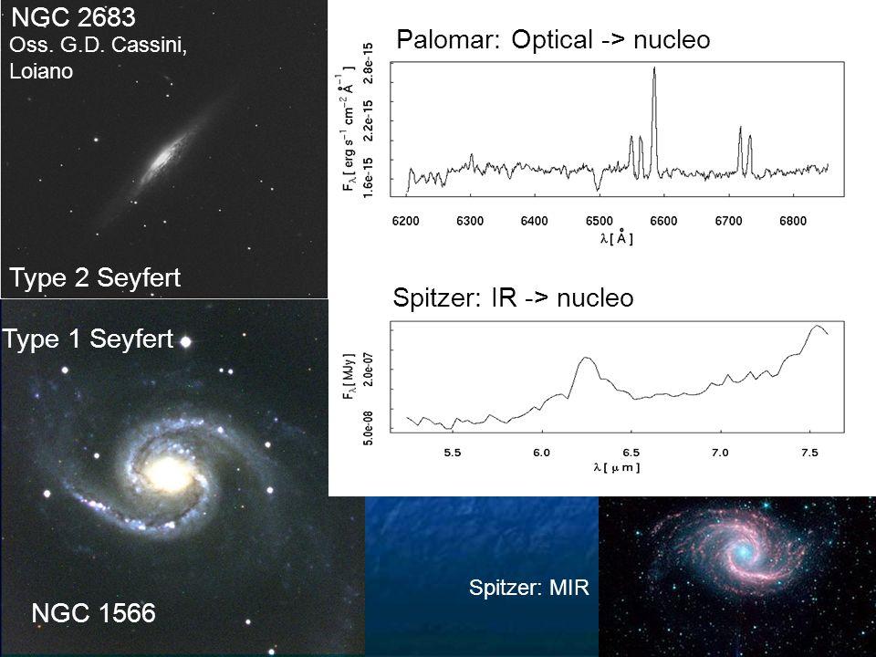 Type 1 Seyfert NGC 1566 Spitzer: MIR Spitzer: IR -> nucleo Oss. G.D. Cassini, Loiano Type 2 Seyfert NGC 2683