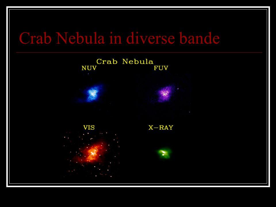 Crab Nebula in diverse bande
