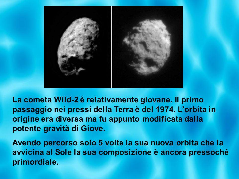 La cometa Wild-2 è relativamente giovane. Il primo passaggio nei pressi della Terra è del 1974. Lorbita in origine era diversa ma fu appunto modificat