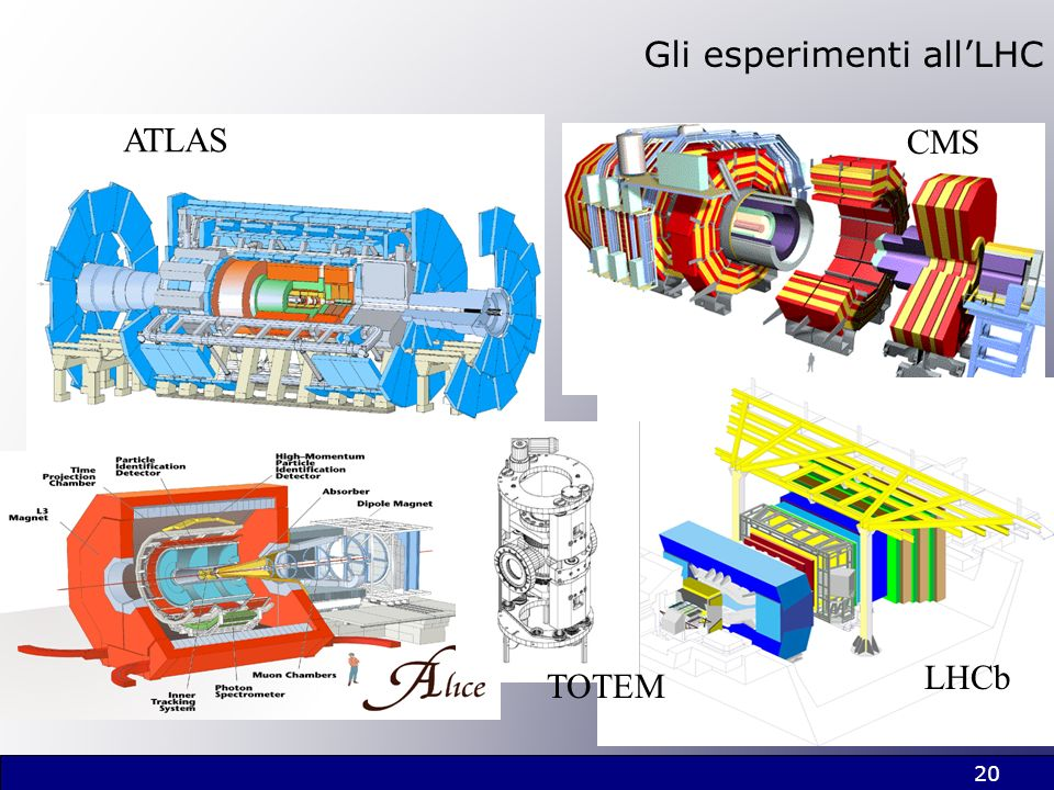 20 Gli esperimenti allLHC ATLAS CMS LHCb TOTEM