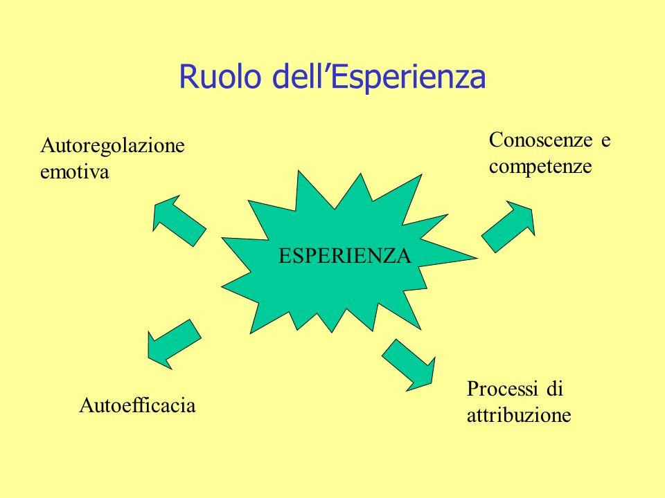 Ruolo dellEsperienza ESPERIENZA Autoefficacia Processi di attribuzione Autoregolazione emotiva Conoscenze e competenze