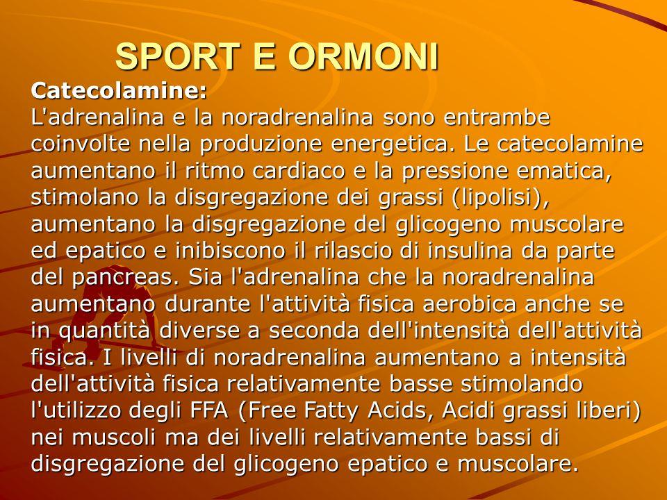 Catecolamine: L'adrenalina e la noradrenalina sono entrambe coinvolte nella produzione energetica. Le catecolamine aumentano il ritmo cardiaco e la pr