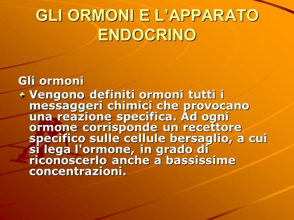 GLI ORMONI E LAPPARATO ENDOCRINO Gli ormoni Ogni cellula può possedere, per un determinato ormone, un solo tipo di recettore, ma diversi tessuti possono avere diversi recettori per lo stesso ormone.