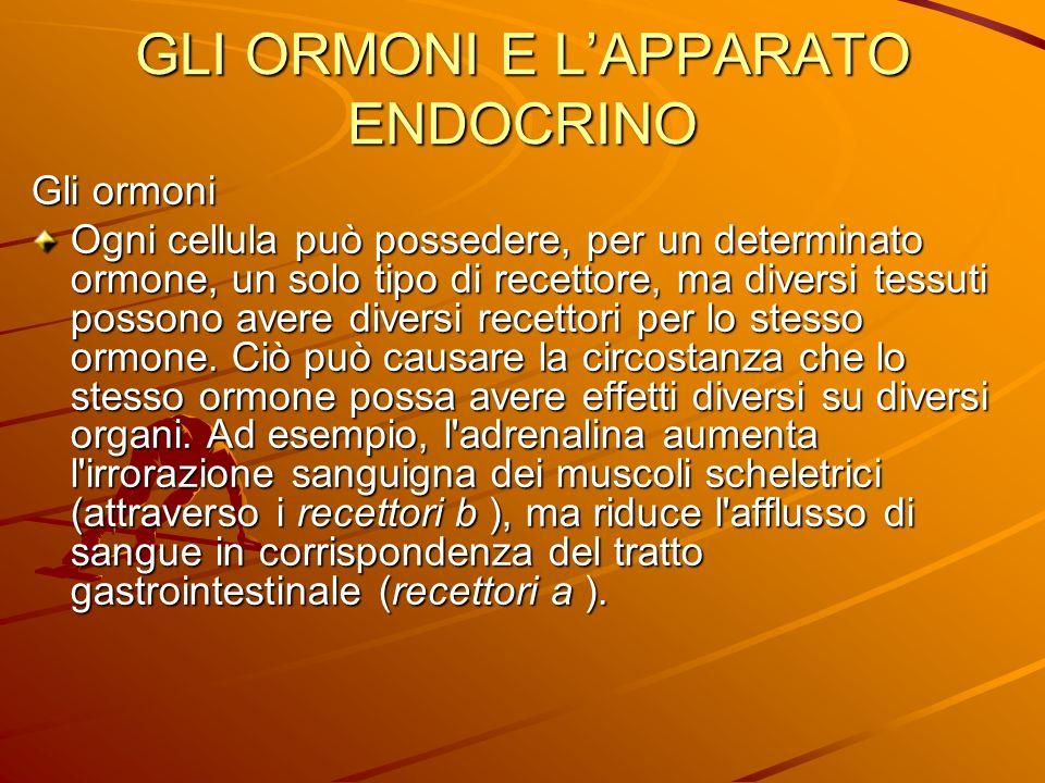 GLI ORMONI E LAPPARATO ENDOCRINO Gli ormoni Ogni cellula può possedere, per un determinato ormone, un solo tipo di recettore, ma diversi tessuti posso