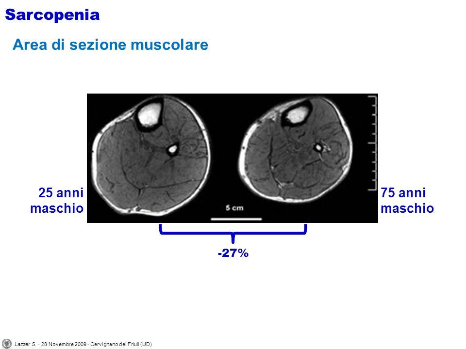 Janssen et al J Appl Physiol 88, 2000 Sarcopenia La quantità e la percentuale di massa muscolare diminuiscono con letà Lazzer S.