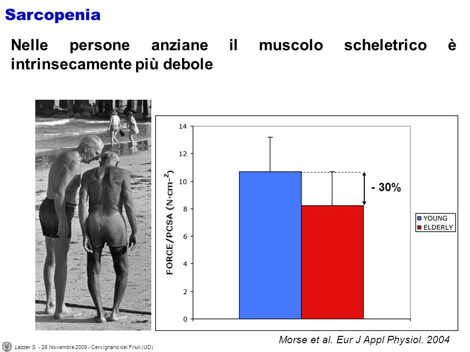Morse et al. Eur J Appl Physiol. 2004 - 30% Sarcopenia Nelle persone anziane il muscolo scheletrico è intrinsecamente più debole Lazzer S. - 28 Novemb