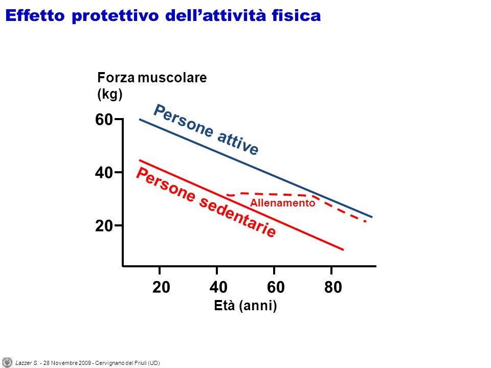 Forza muscolare (kg) 60 40 20 80204060 Età (anni) Persone attive Persone sedentarie Allenamento Effetto protettivo dellattività fisica Lazzer S. - 28