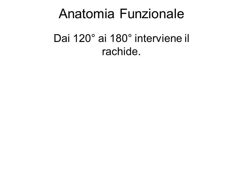 Anatomia Funzionale Dai 120° ai 180° interviene il rachide.