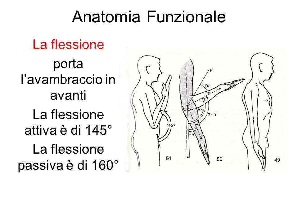 Anatomia Funzionale La flessione porta lavambraccio in avanti La flessione attiva è di 145° La flessione passiva è di 160°