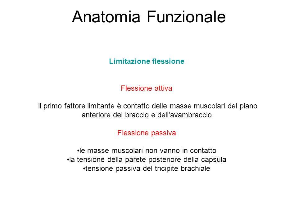 Anatomia Funzionale Limitazione flessione Flessione attiva il primo fattore limitante è contatto delle masse muscolari del piano anteriore del braccio