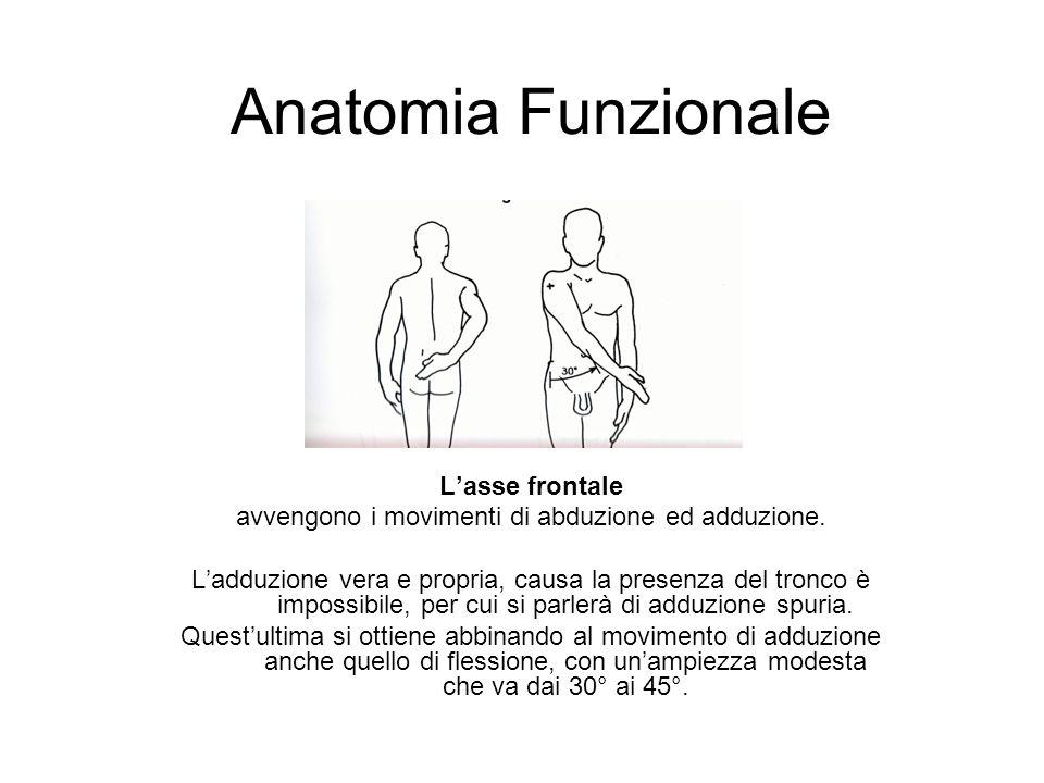 Anatomia Funzionale Lasse frontale avvengono i movimenti di abduzione ed adduzione. Ladduzione vera e propria, causa la presenza del tronco è impossib