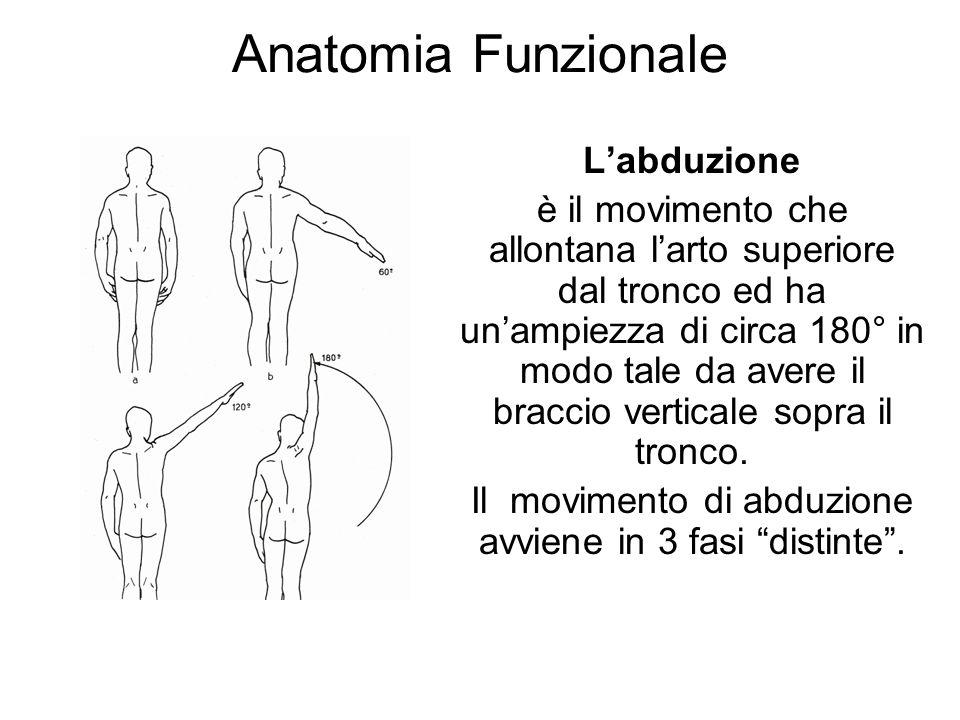 Anatomia Funzionale Labduzione è il movimento che allontana larto superiore dal tronco ed ha unampiezza di circa 180° in modo tale da avere il braccio verticale sopra il tronco.