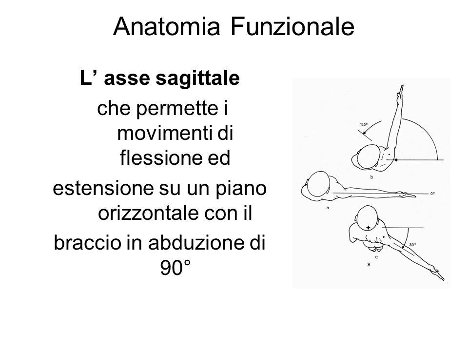 Anatomia Funzionale L asse sagittale che permette i movimenti di flessione ed estensione su un piano orizzontale con il braccio in abduzione di 90°