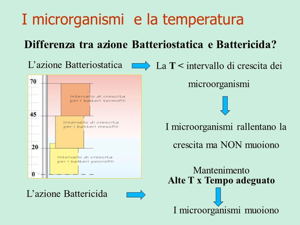 I microrganismi e la temperatura Differenza tra azione Batteriostatica e Battericida? Lazione Batteriostatica La T < intervallo di crescita dei microo