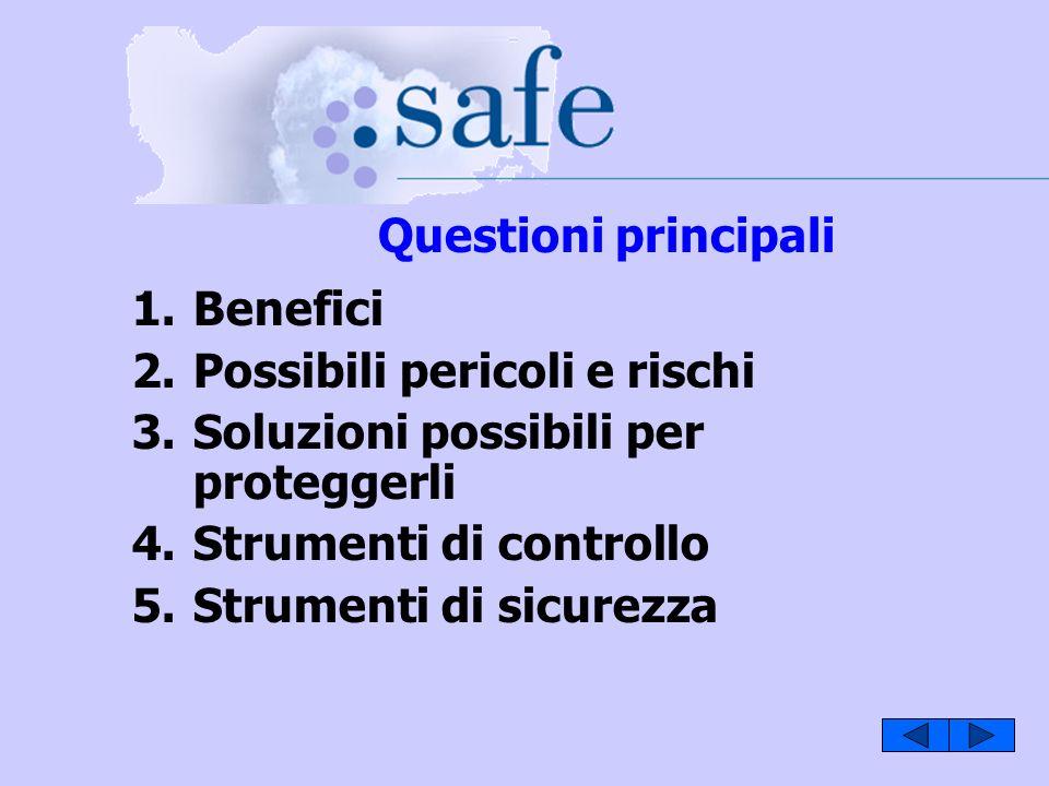 1.Benefici 2.Possibili pericoli e rischi 3.Soluzioni possibili per proteggerli 4.Strumenti di controllo 5.Strumenti di sicurezza Questioni principali