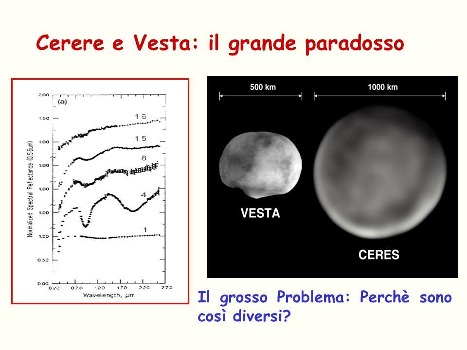 Cerere e Vesta: il grande paradosso Il grosso Problema: Perchè sono così diversi?