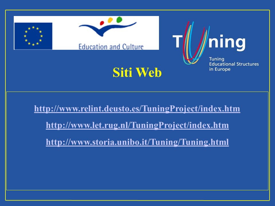 Siti Web http://www.relint.deusto.es/TuningProject/index.htm http://www.let.rug.nl/TuningProject/index.htm http://www.storia.unibo.it/Tuning/Tuning.html Management Committee
