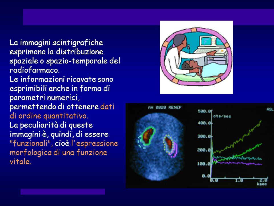 La immagini scintigrafiche esprimono la distribuzione spaziale o spazio-temporale del radiofarmaco. Le informazioni ricavate sono esprimibili anche in