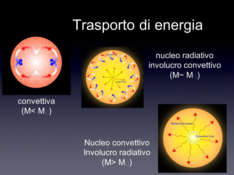 Trasporto di energia convettiva (M< M ) nucleo radiativo involucro convettivo (M~ M ) Nucleo convettivo Involucro radiativo (M> M )