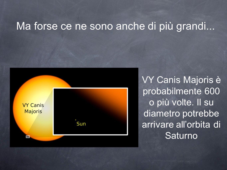 Ma forse ce ne sono anche di più grandi... VY Canis Majoris è probabilmente 600 o più volte.