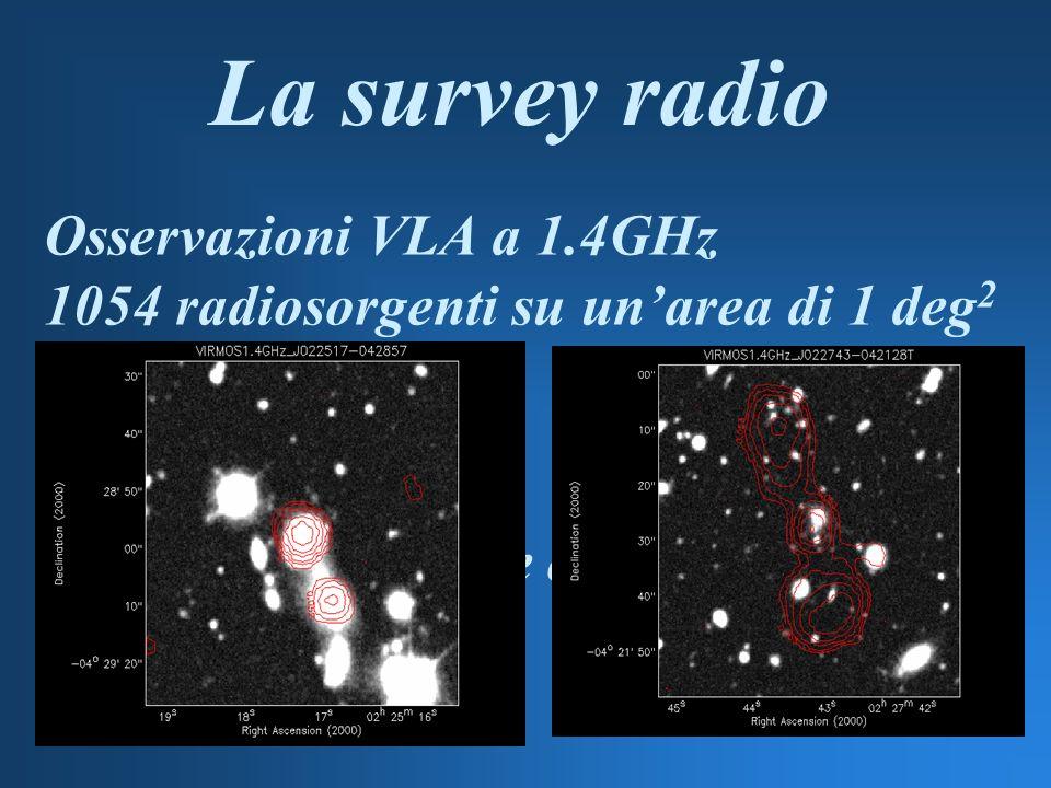 La survey radio Osservazioni VLA a 1.4GHz 1054 radiosorgenti su unarea di 1 deg 2 Analisi dei conteggi Identificazione delle controparti ottiche
