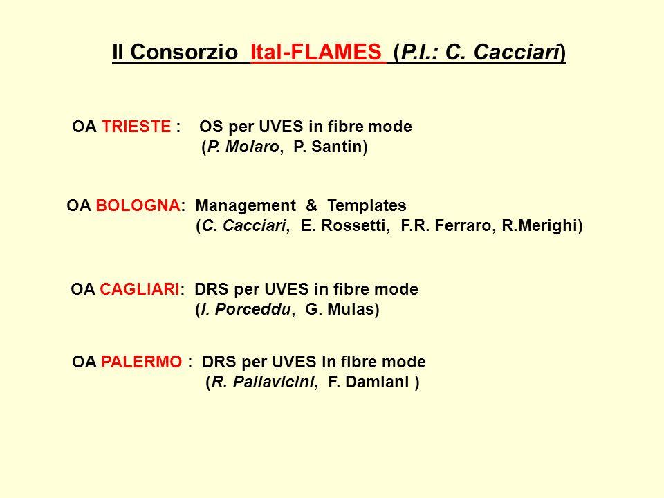 Il Consorzio Ital-FLAMES (P.I.: C. Cacciari) OA TRIESTE : OS per UVES in fibre mode (P. Molaro, P. Santin) OA BOLOGNA: Management & Templates (C. Cacc
