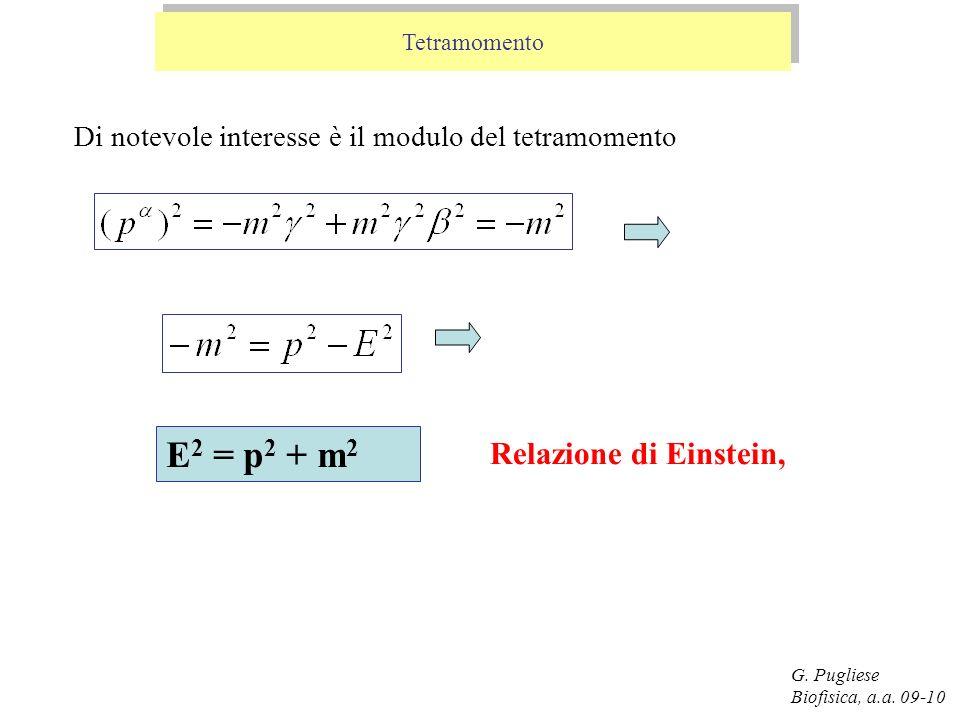 G. Pugliese Biofisica, a.a. 09-10 E 2 = p 2 + m 2 Di notevole interesse è il modulo del tetramomento Relazione di Einstein, Tetramomento