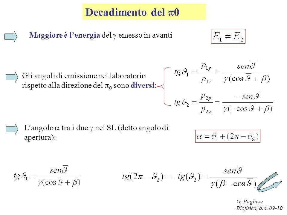 G. Pugliese Biofisica, a.a. 09-10 Decadimento del 0 Maggiore è lenergia del emesso in avanti Gli angoli di emissione nel laboratorio rispetto alla dir